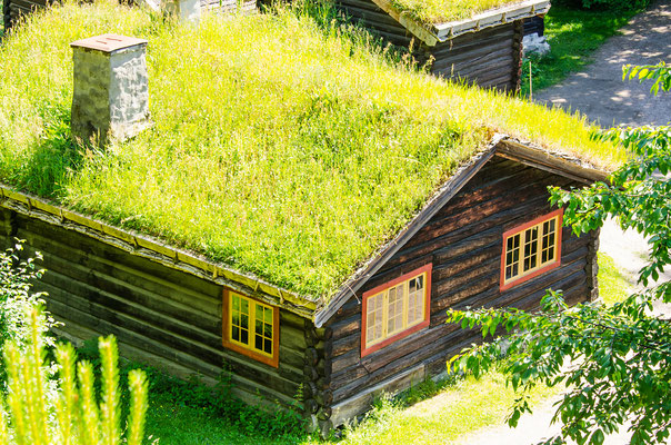 Norwegian typical grass roof country house Copyright Nanisimova