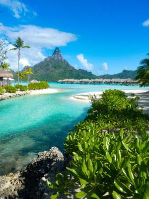 Bora Bora copyright  Darrelle Twyman