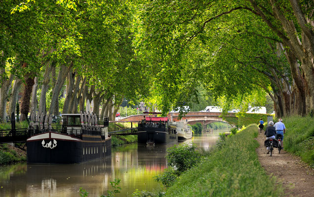 walk along the canal of midi in Toulouse, France Copyright  thieury