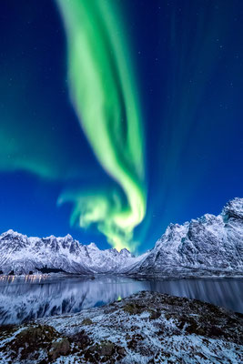 Lofoten Aurora Borealis copyright Cole Ippoliti