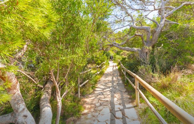 Calpe European Best Destinations - Best Destinations to visit in Spain - Ifach rock natural reserve hiking copyright BAHDANOVICH ALENA