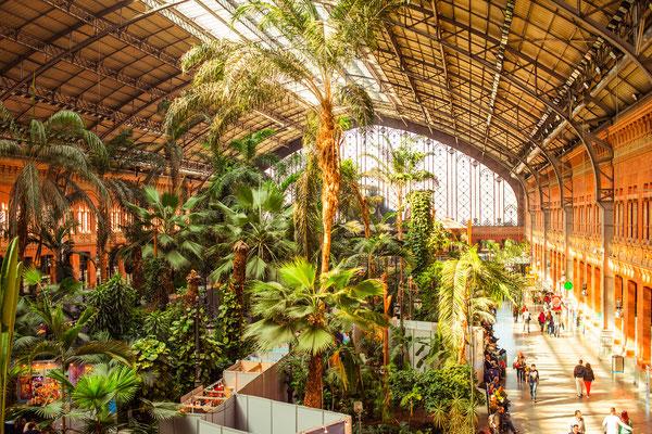 Atocha Railway Station, Madrid by Yulia Grigoryeva - Shutterstock.com