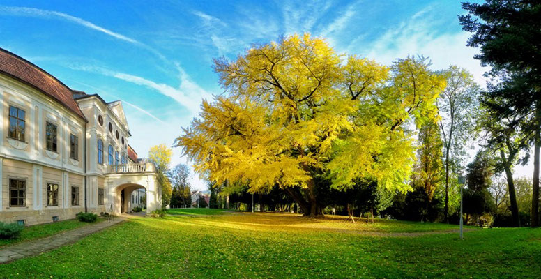 Bjelovar Bilogora County - European Destinations of Excellence - European Best Destinations