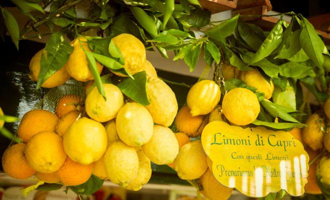Capri Lemon copyright  mikolajn