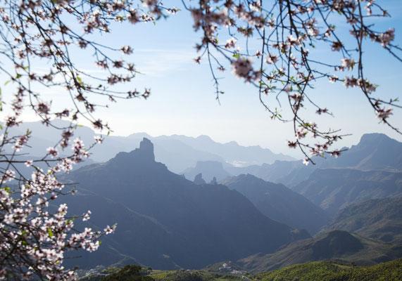 Gran Canaria - European Best Destinations - Caldera de Tejeda - Gran Canaria - Copyright Tamara Kulikova