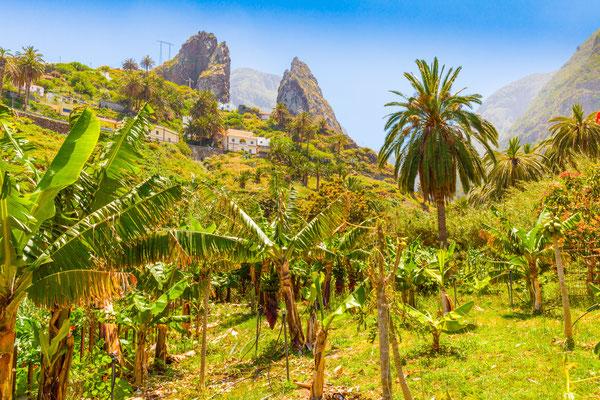 Gomera Island copyright Mark Pitt Images