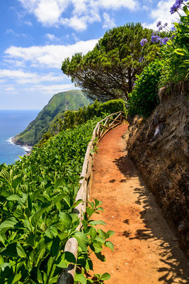 Walking road Azores by Vicky SP - shutterstock