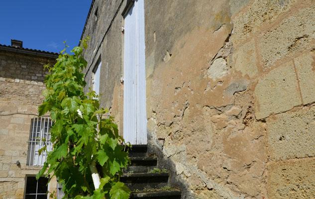 Château-Guadet-Saint-Emilion