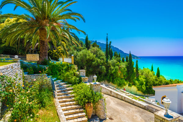 Corfu - European Best Destinations - Agios Georgios palmtree - Copyright Balate Dorin