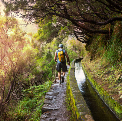 Levada irrigation channel, Madeira, Portugal - Copyright Galyna Andrushko