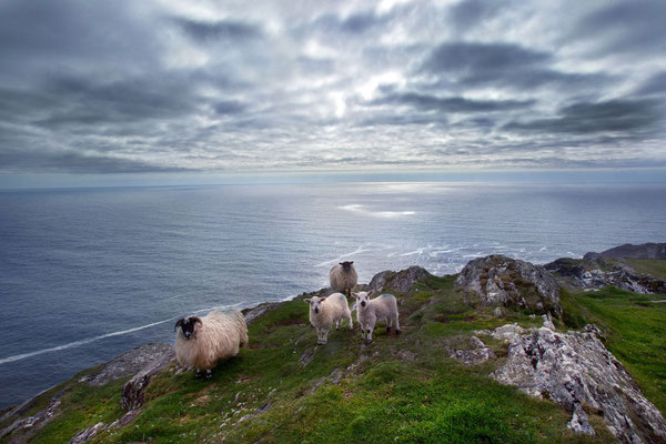 Sheep's Head Peninsula - European Destinations of Excellence - European Best Destinations