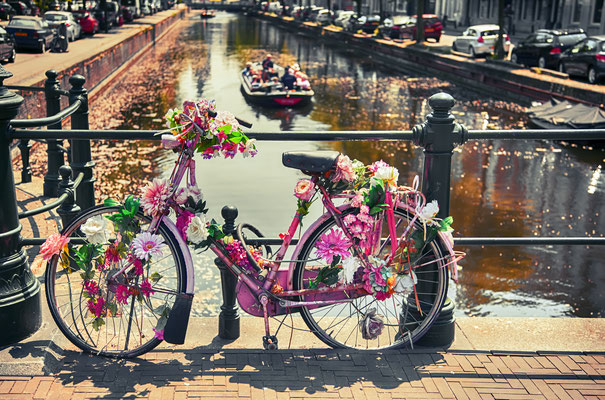 Bike near a bridge in the Hague by ariadna de raadt