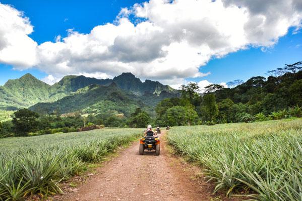 Tahiti outdoor activities copyright Myles McGuinness