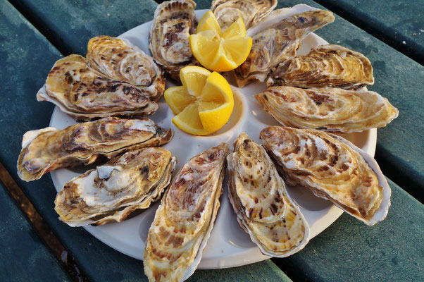 Plate of freshly shucked oysters in Brittany, France - Copyright EQRoy