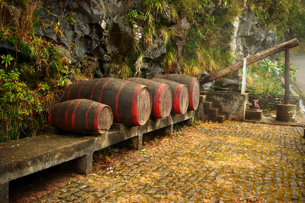 Blandy's Wine Lodge in Funchal, Madeira - Copyright Kristina Stasiuliene