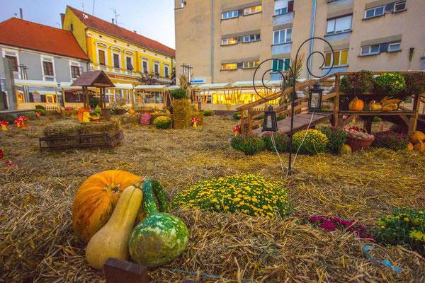Upper Medimurje Region - Sustainable tourism in Europe - European Best Destinations