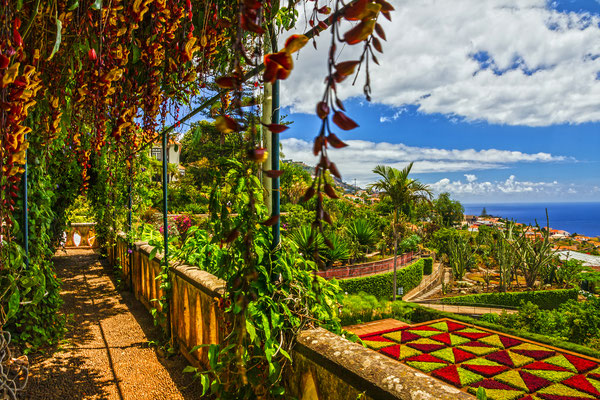 Madeira Botanical Garden, Funchal, Portugal - Copyright Valentina Photo