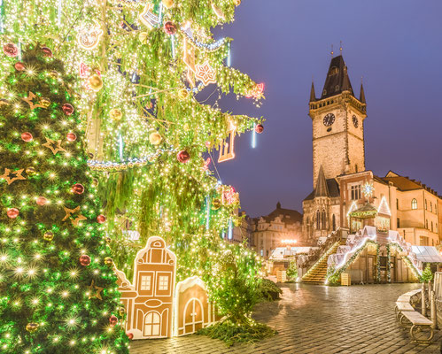 Christmas tree in magical city of Prague at night, Czech Republic - By Balate Dorin