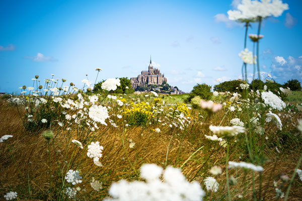 Mont Saint Michel between flowers, France - Copyright ueuaphoto