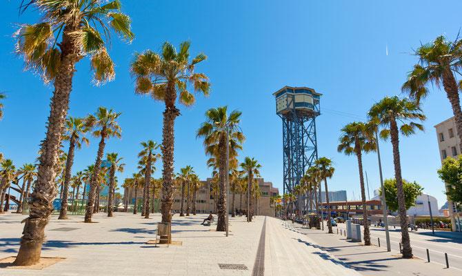Barcelona beach - Copyright eregalsv - Fotolia