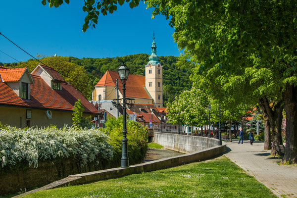 Catholic church and river in the center of Samobor, town in northern Croatia copyright Iascic