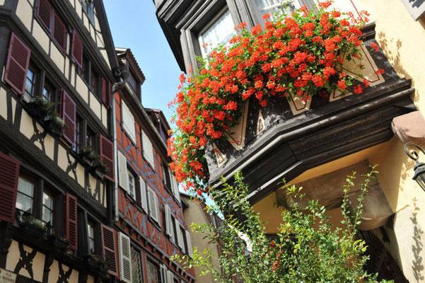 Colmar - Rue des marchands - Copyright Colmar Tourisme