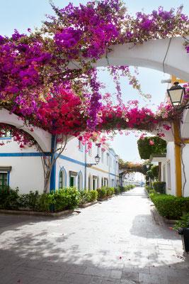 Gran Canaria Puerto de Mogan copyright  lunamarina