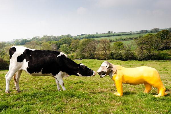 Clonakilty - Sustainable tourism in Ireland - European Best Destinations - EDEN - Copyright Clonakilty.ie