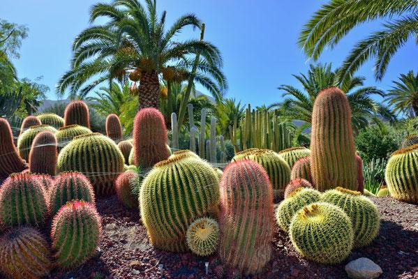 Gran Canaria - European Best Destinations - Gran Canaria - Copyright  Oleg Znamenskiy