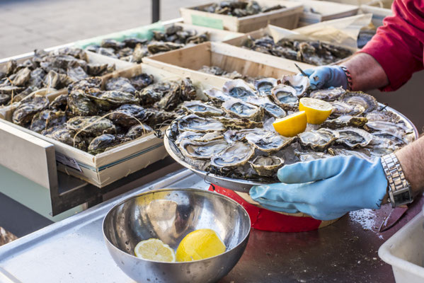 Tray of opened fresh oysters on half shell on ice with lemon in a street of Bordeaux Copyright Alvaro German Vilela