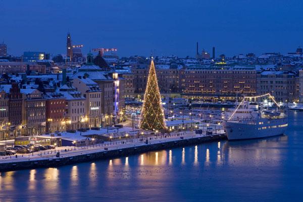 Stockholm Christmas tree - Copyright Visit Stockholm