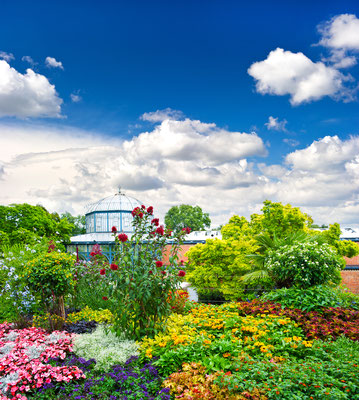 landscape with colorful flowers and blue sky. germany, stuttgart, public park Copyright LiliGraphie