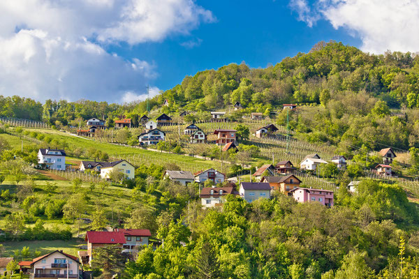 Zagorje hills vineyards and cottages, Krapina, Croatia - Copyright xbrchx