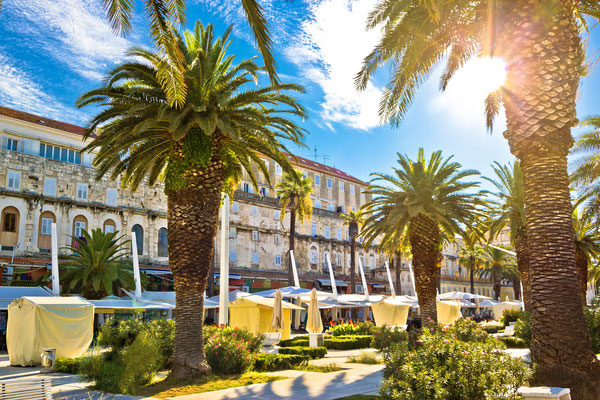 Split main waterfront walkway palms and architecture, Dalmatia, Croatia by xbrchx