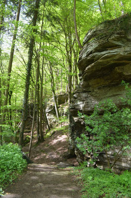 Mullerthal - European Best Destinations - Local hike © ORT MPSL