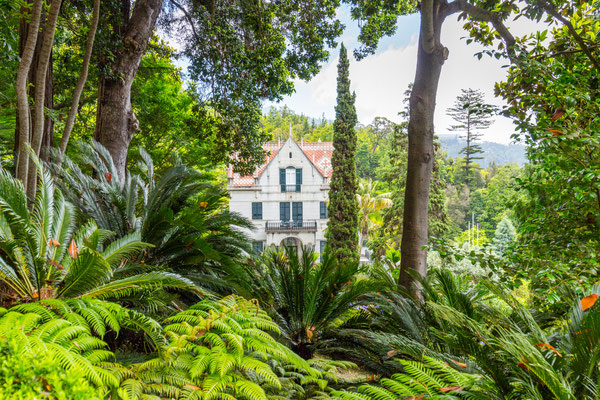 Tropican Garden with Monte Palace in Funchal, Madeira island, Portugal Copyright  DaLiu