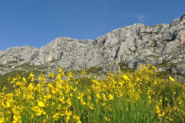 Aix-en-Provence - European Best Destinations - Copyright Aix-en-Provence Tourism Office