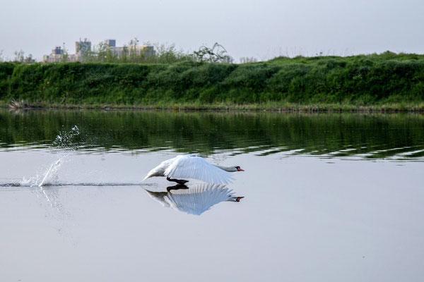 Vukovar - Sustainable tourism in Croatia - European Best Destinations