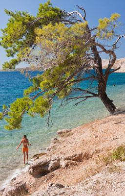 Cavtat beach tourist copyright Photoshooter 2015