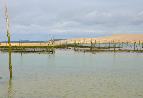 Oyster-farm-Arcachon
