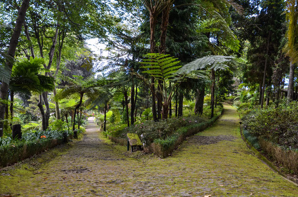 Jardim Monte Palace Tropical Garden, Madeira Islands, Portugal Ⓒ Matthieu Cadiou / European Best Destinations