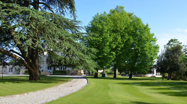 Chateau-Pape-Clement-Bordeaux ©EBD