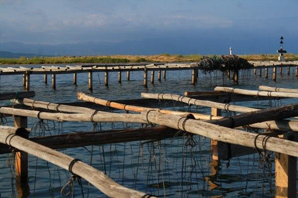 The Elbro Delta National Park - European Destinations of Excellence - European Best Destinations