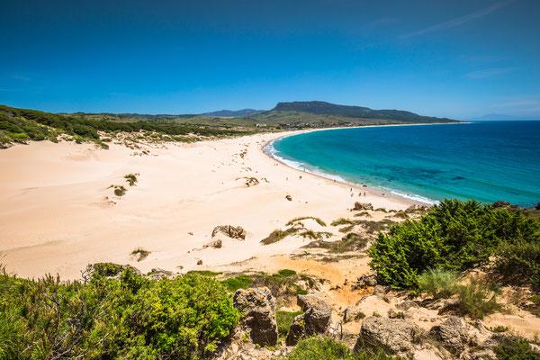 Sand dune of Bolonia beach, province Cadiz, Andalucia, Spain Copyright Lukasz Janyst
