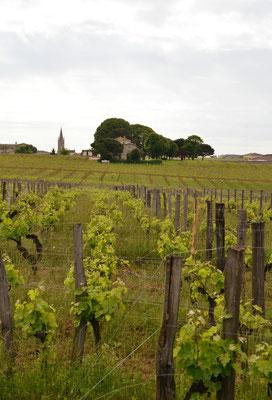 Chateau-Coutet-Saint-Emilion