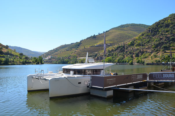 Douro Valley Cruise with FeelDouro © European Best Destinations