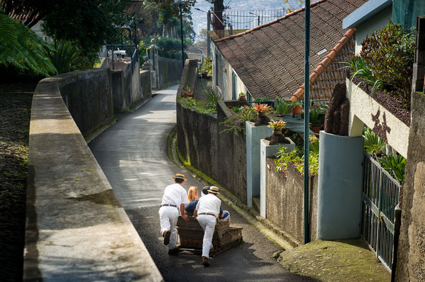 Two tobogan riders are moving cane sledge down through the asphalt streets near Monte garden in Funchal, Madeira island, Portugal - Copyright Nikiforov Alexander