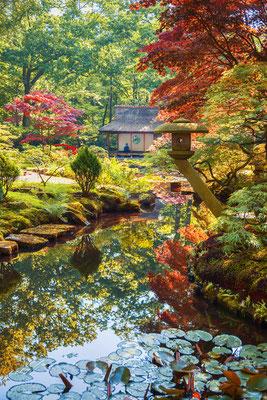Japanese Garden in Clingendael Park by ariadna de raadt