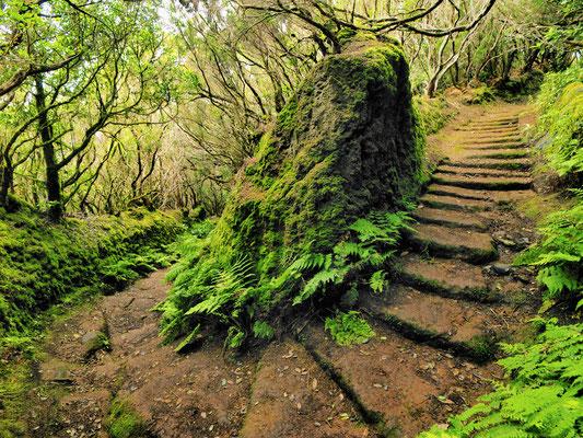 Tenerife - Anaga mountains copyright Karol Kozlowski