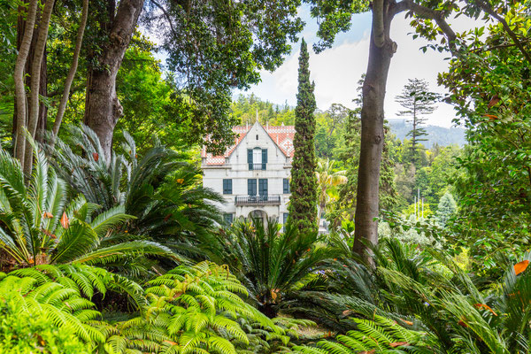 Monte Palace Tropical Garden in Funchal, Madeira - Copyright  DaLiu